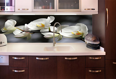 9500599d8416b ... TAPETA NA KUCHYNSKÚ LINKU · Fototapeta - Zástena biela orchidea 18623