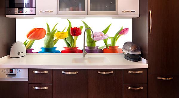 1871f36205f55 Fototapeta zástena - Farby tulipánov 6338 | Kreatívne napojiteľné ...