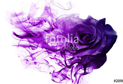 Fototapeta Smoke rose Violet ft-209892810